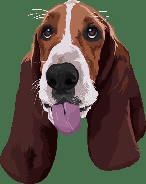sample cartoon of beagle