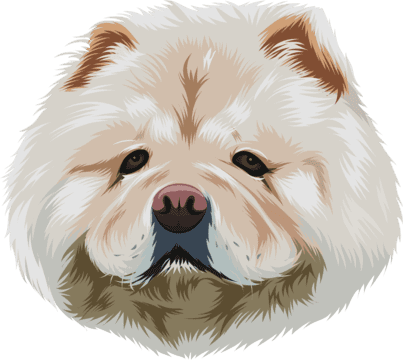 Cartoonize Your Dog